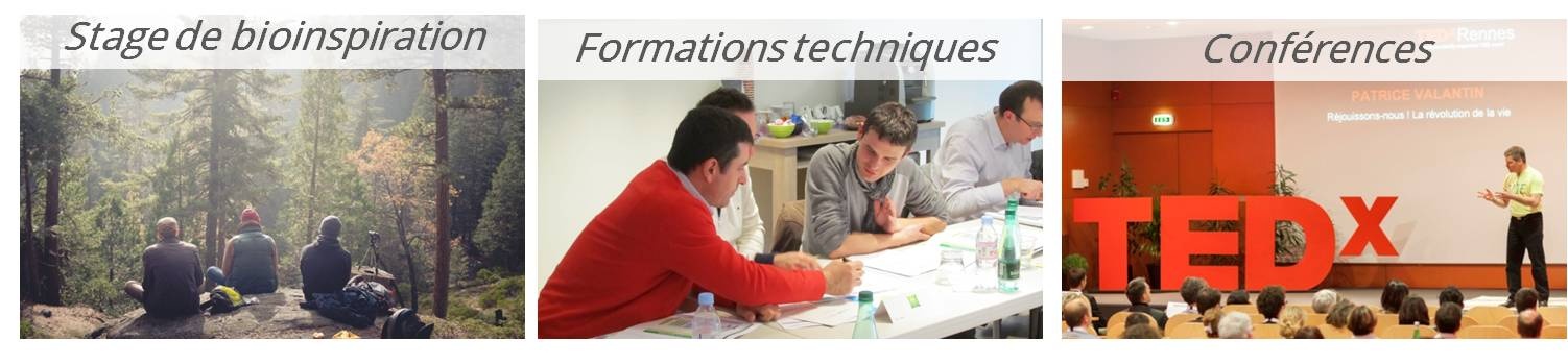 Prestations formations, séminaires et stages