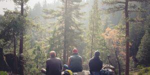 personnes contemplant la forêt